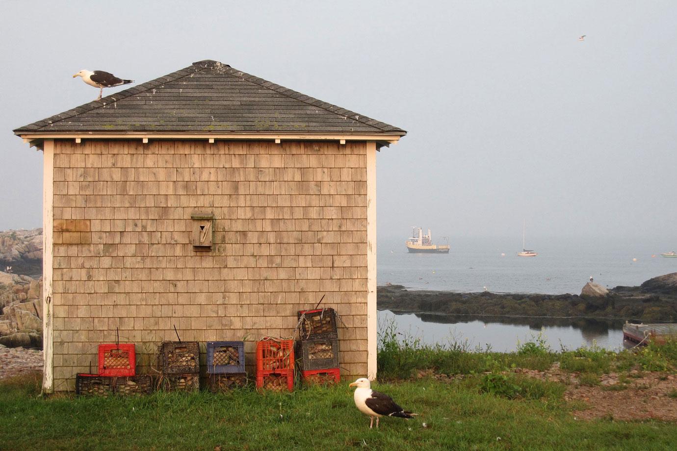Island Writing