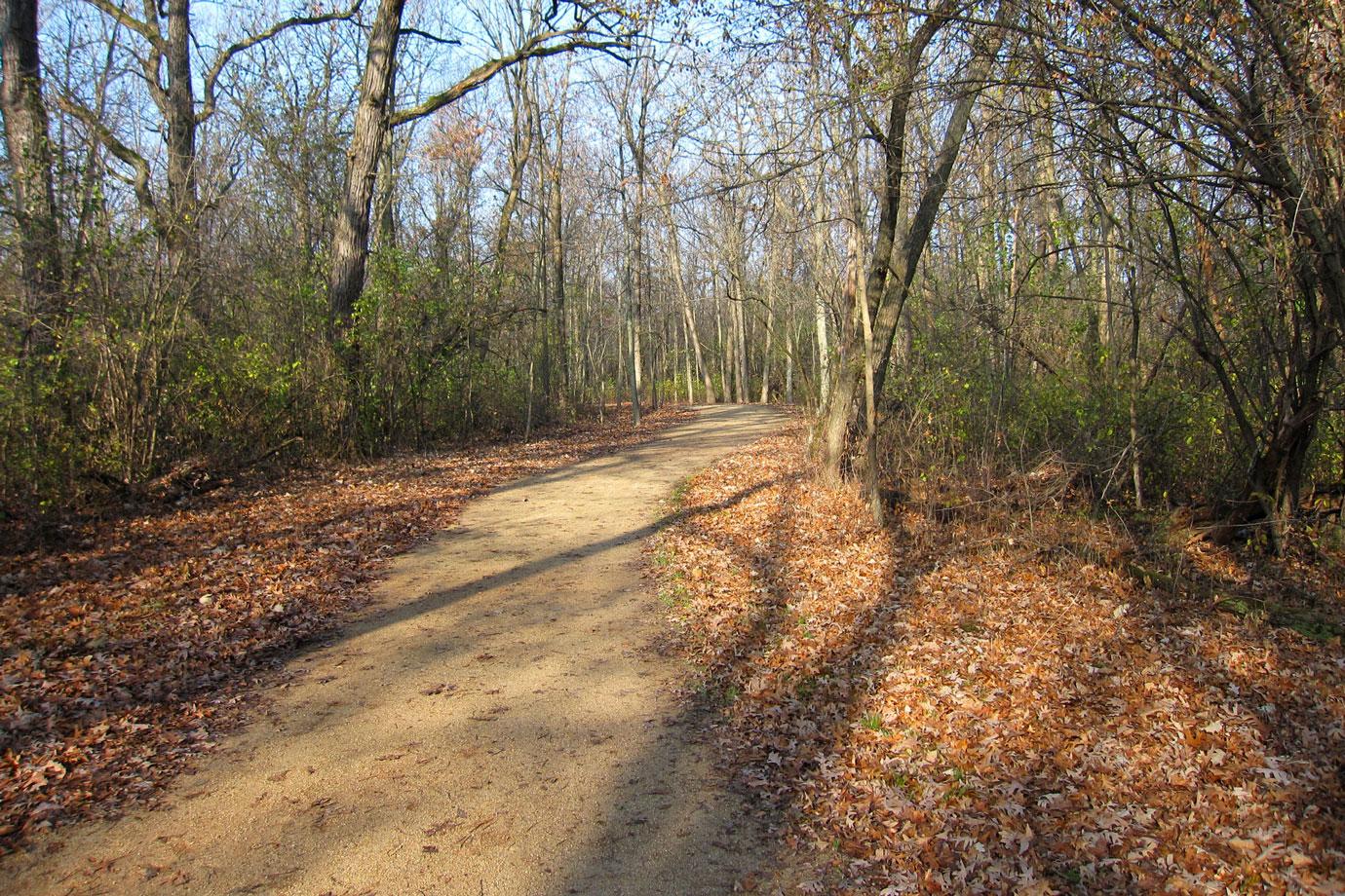 November Trails