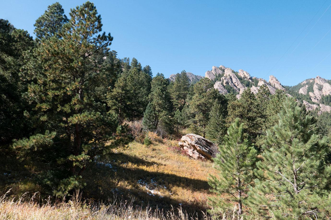 Mesa Trail 1